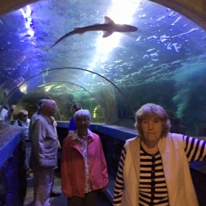 Older people on a day out at an aquarium